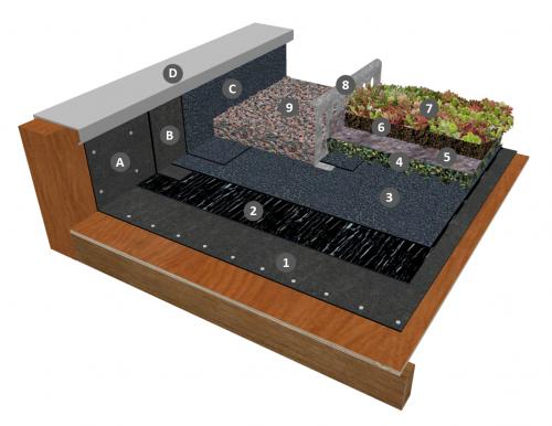 Bicouche thermosoudable sous panneau rétenteur d'eau (ou drain), filtre et substrat sans isolation